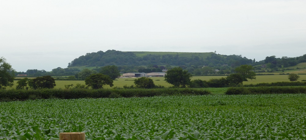 Cadbury Castle
