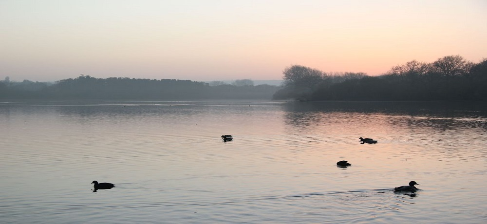 Chard Reservoir